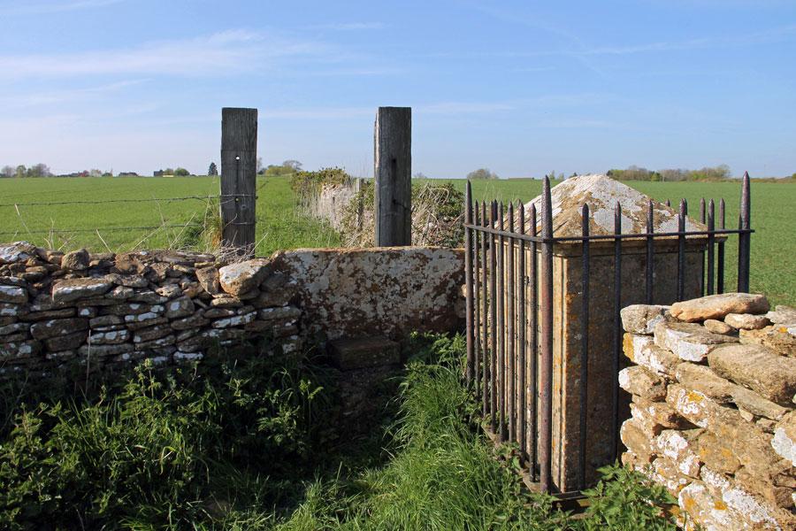 Wiltshire Plains