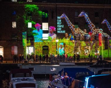 Bristol Light Festival